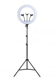 Iluminador Ring Light 18 Poleg Make Greika Quente/frio Cl-18